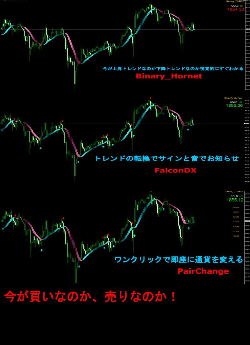 ●バイナリーオプション専用サインツーツ「FalconDX」  ●相場のトレンドを一目で把握できるインジケーター「Binary Hornet」  ●通貨を即座に切り替えられる「PairChange」