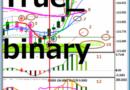 高勝率バイナリーオプション手法 True_binary